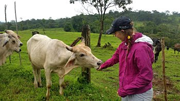Eillie Sambrone and a cow in Costa Rica